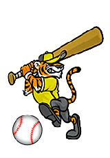 purdys central high tigers baseball